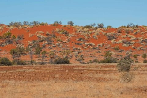 Vivid red sand hills typical of this area