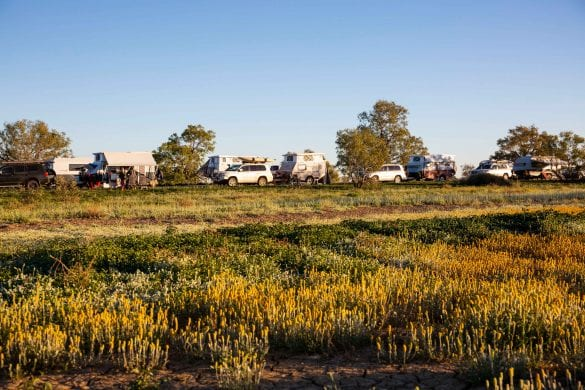 Camped on Birdsville Common